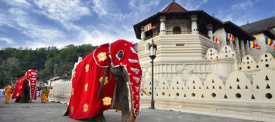 SCENIC SRI LANKA 6 Nights / 7 Days